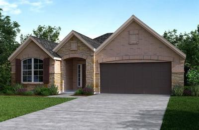 Manvel Single Family Home For Sale: 7003 Water Glen Lane