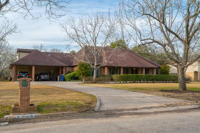 Friendswood Single Family Home For Sale: 403 Clearview Avenue