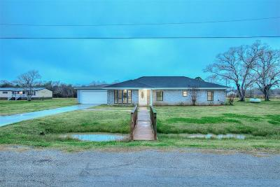 Brazoria Single Family Home For Sale: 19114 County Road 520b