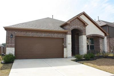 Houston Single Family Home For Sale: 18535 Windy Knoll Way