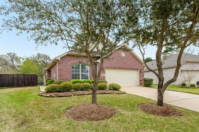 Pearland Single Family Home For Sale: 1636 Berlino Drive