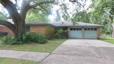 Bay City Single Family Home For Sale: 2004 Sandlewood Drive