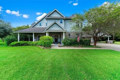 Fort Bend County Single Family Home For Sale: 3903 Ramble Creek Drive