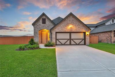 Texas City Single Family Home For Sale: 12301 Murano Drive