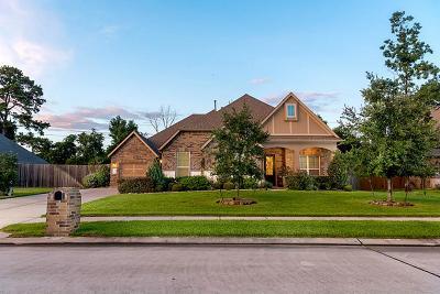 Single Family Home For Sale: 19506 Sanctuary Place Drive