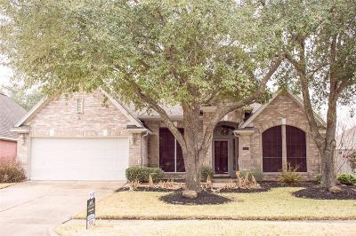 Sugar Land Single Family Home For Sale: 807 Heather Park Court