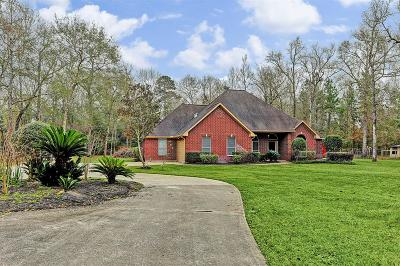 New Caney Single Family Home For Sale: 22704 Brook Forest Road
