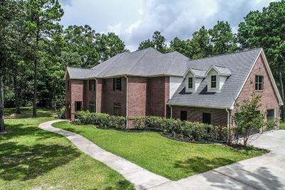 Huffman Single Family Home For Sale: 29006 N Reserve Bend Drive