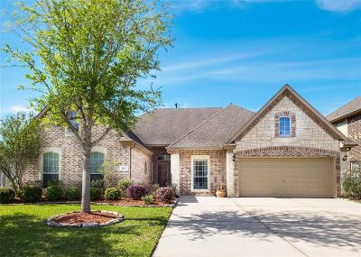 Friendswood Single Family Home For Sale: 1213 Abigail Lane