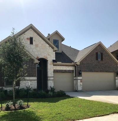 Katy Single Family Home For Sale: 3803 W Briarlilly Park Circle