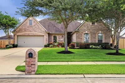 Friendswood Single Family Home For Sale: 717 Falcon Lake Drive