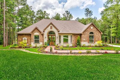 Montgomery County Single Family Home For Sale: 14715 Turquoise Trail