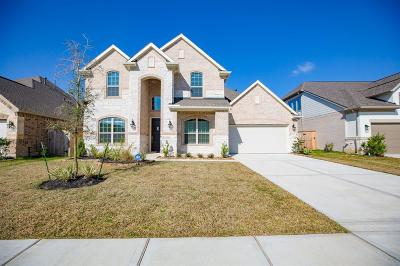 Tomball Single Family Home For Sale: 21719 Albertine Drive