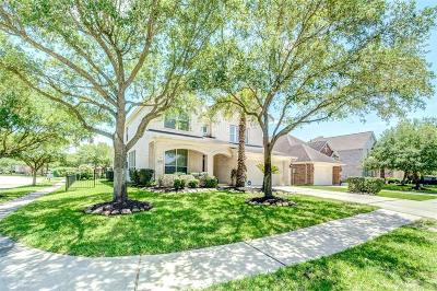 Houston Single Family Home For Sale: 10130 Lakeside Gables Drive