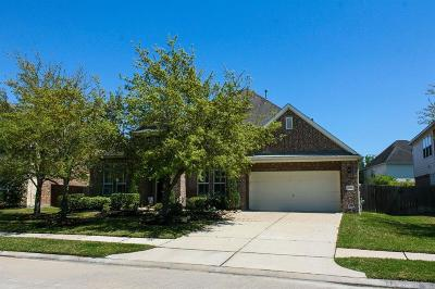 Pearland Single Family Home For Sale: 3101 Decker Field Lane