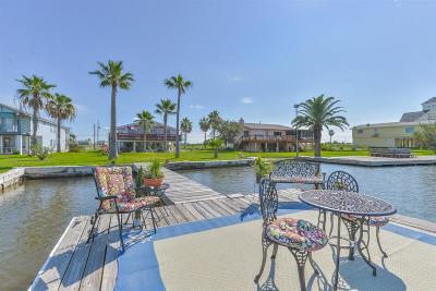 Galveston Single Family Home For Sale: 1217 Pilot Lane