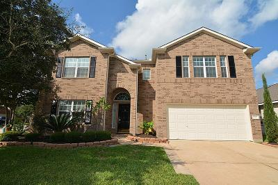 Tomball Single Family Home For Sale: 20103 Yosemite Falls Drive