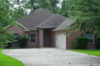 Single Family Home For Sale: 707 Mesquite Drive