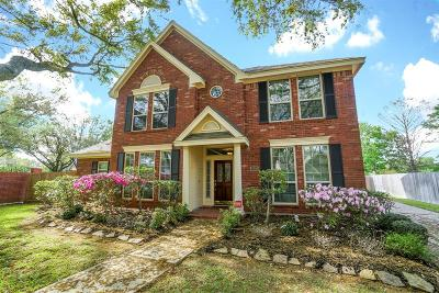 Sugar Land Single Family Home For Sale: 3203 Vista Lake Drive