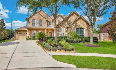 Sugar Land Single Family Home For Sale: 526 Traynor Lane