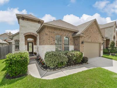 Conroe Single Family Home For Sale: 143 Quail Meadow Drive
