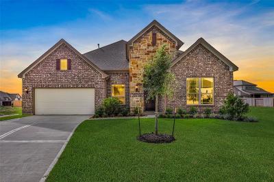 League City Single Family Home For Sale: 2314 Navo Lane