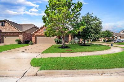 Katy Single Family Home For Sale: 6106 Brookmall Drive