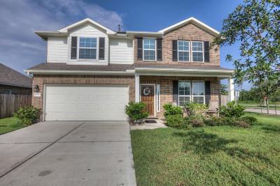 League City Single Family Home For Sale: 6526 Turner Fields Lane