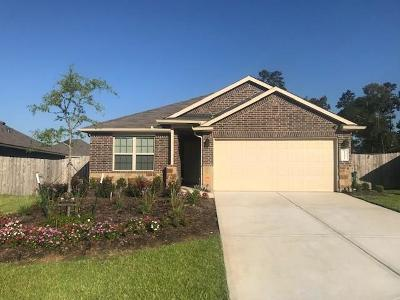 Conroe Single Family Home For Sale: 14021 Stony Gap Lane