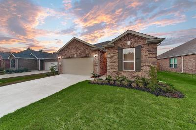 Single Family Home For Sale: 3840 Tolby Creek Lane