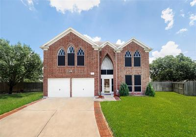 Houston Single Family Home For Sale: 9502 Hanging Moss Trail