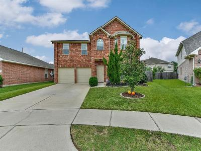 Houston Single Family Home For Sale: 8710 Cataldo Court