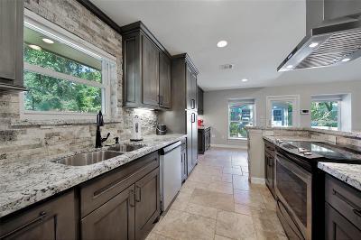 Houston Single Family Home For Sale: 5938 Reamer Street