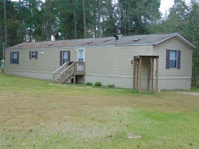 Magnolia Single Family Home For Sale: 31118 Green Tree