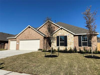 Tomball Single Family Home For Sale: 12514 Montclair Landing Court