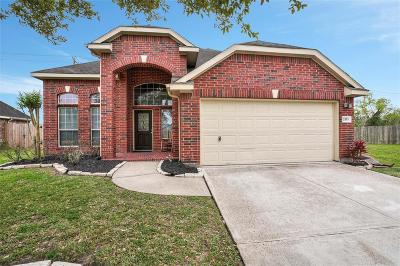 League City Single Family Home For Sale: 2553 Sandvalley Way