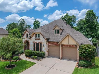 Single Family Home For Sale: 451 Hendricks Forest Lane