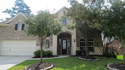 Houston Single Family Home For Sale: 13938 Sawmill Run Lane