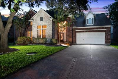 Houston Single Family Home For Sale: 8810 Pecan Springs Drive