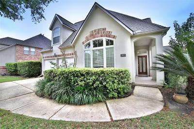 Sugar Land Single Family Home For Sale: 2915 Monet Drive