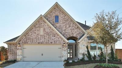 Katy Single Family Home For Sale: 2903 Holly Lane