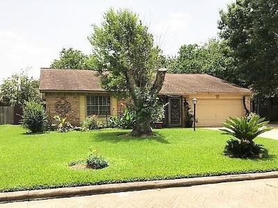 Houston Single Family Home For Sale: 1915 Delphi Lane