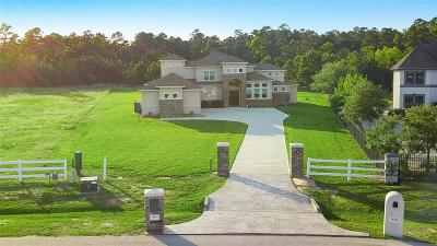 Montgomery Single Family Home For Sale: 18462 Gary Player Drive
