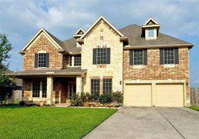 Baytown Single Family Home For Sale: 8602 Rocky River Street