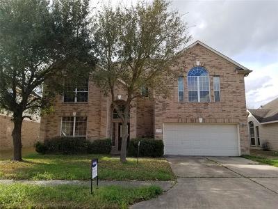 Houston Single Family Home For Sale: 21038 Narrow Gate Drive