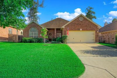 Conroe Single Family Home For Sale: 2051 Lulach Lane