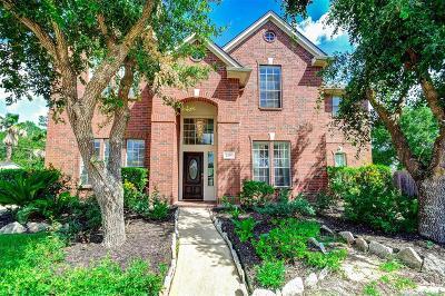 Sugar Land Single Family Home For Sale: 2206 Desert Vine Court