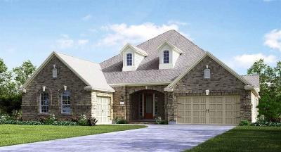 Friendswood Single Family Home For Sale: 1225 Feather Glen Lane