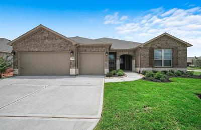 Single Family Home For Sale: 411 Seaside Sparrow Way