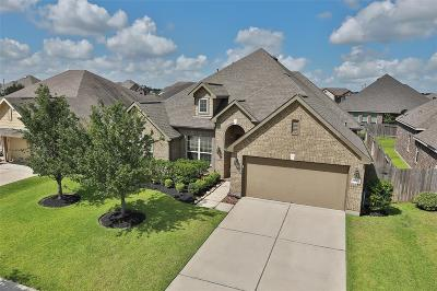 Single Family Home For Sale: 12907 Chatfield Manor Lane